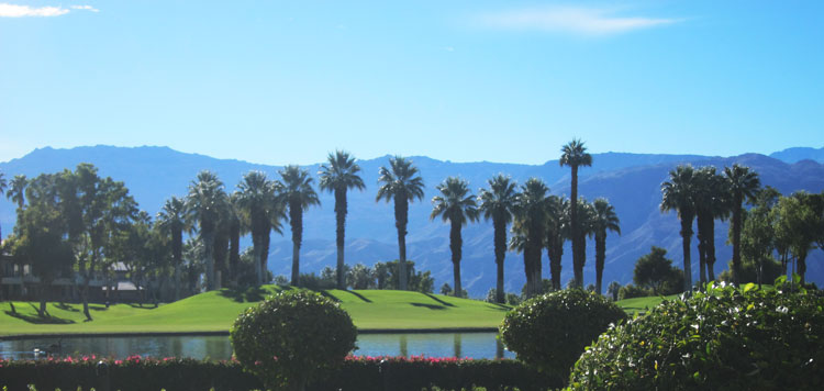 MarriotHotelPalmDesert4